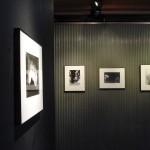 hanayo_exhibition_02